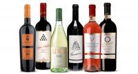 Best of Apulien - 6 Weine aus Apulien die Sie sich nicht entgehen lassen können