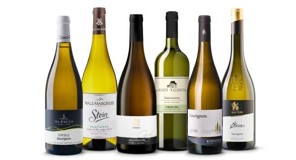 Best of Sauvignon - 6 Flaschen des besten Sauvignon Weins