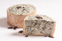"""""""Schokoblu"""", Blauschimmelkäse aus Kuhmilch mit Bitterschokolade veredelt - Degust"""