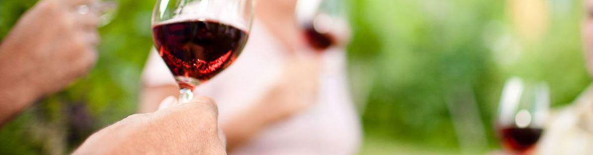 rotweine-kalterer-kellerei595f890474dda