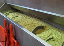 extraktionsmaschine-oliven