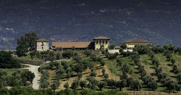 Azienda Agricola Statti
