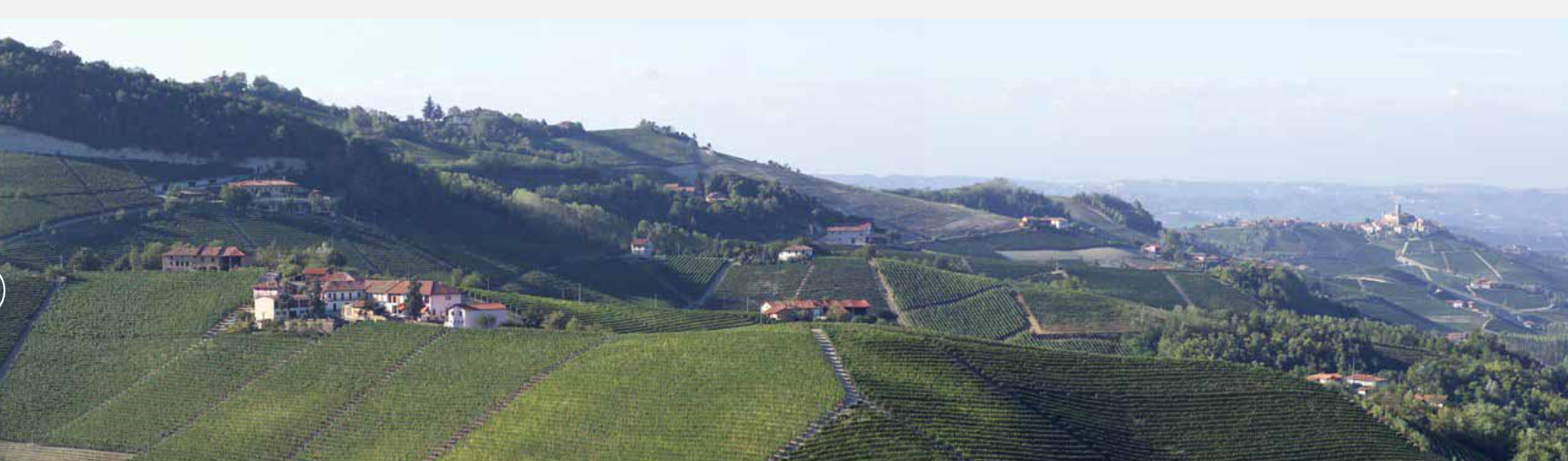 Weingut-Paolo-Conterno
