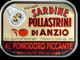 Pollastrini Sardinen pikkant in Tomatensauce - Scharfe Sardinen in Tomatensauce, Dose, 100g