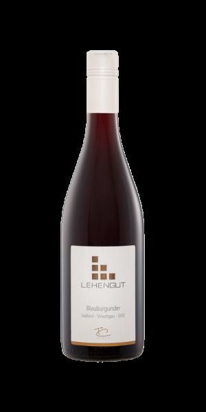Blauburgunder Südtirol Vinschgau D.O.C. 2015 - Lehengut - LETZTE STÜCKE!!