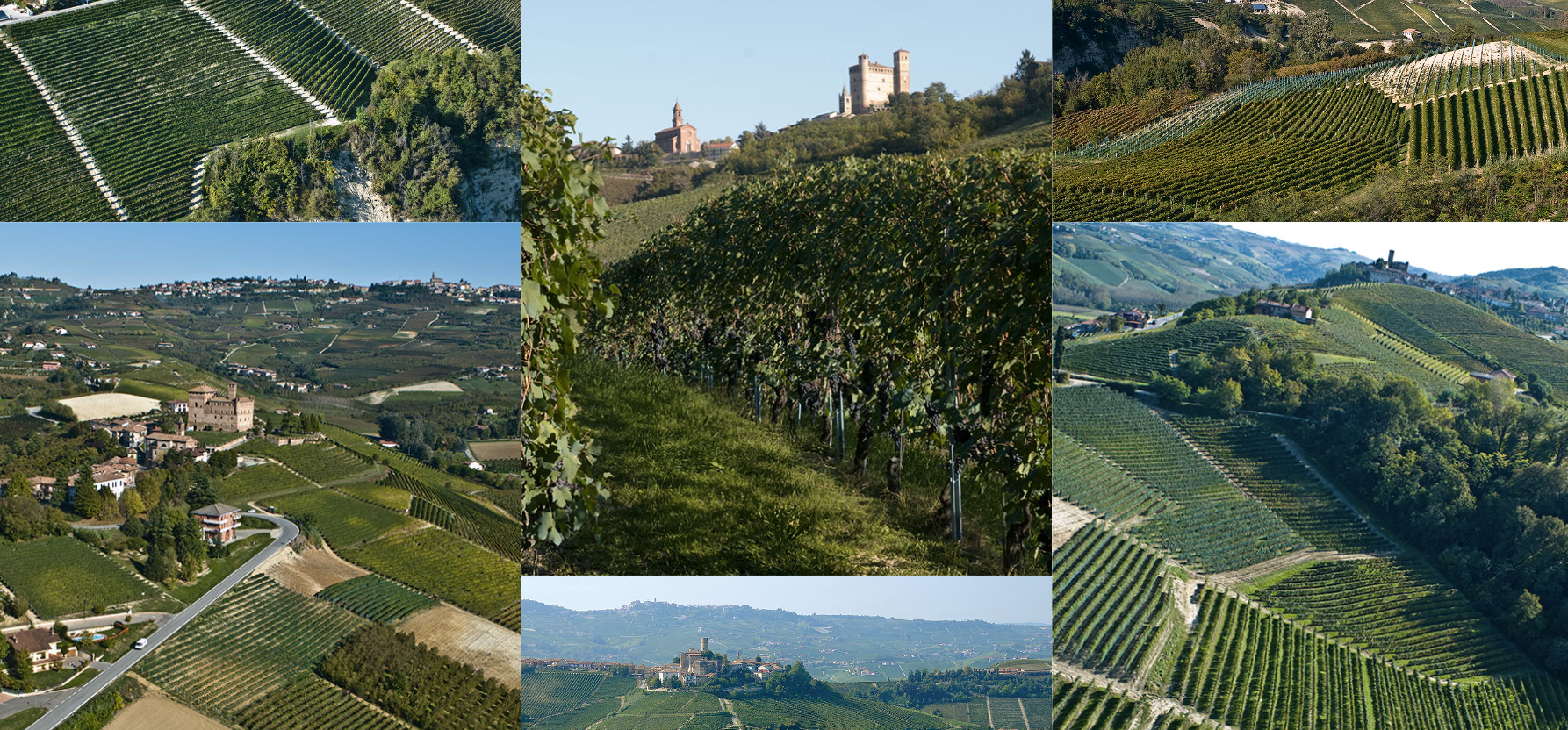 Weinberge-Flasche-Wein-Keller-Glas-Barolo-Piemont-Sordo-Giovanni