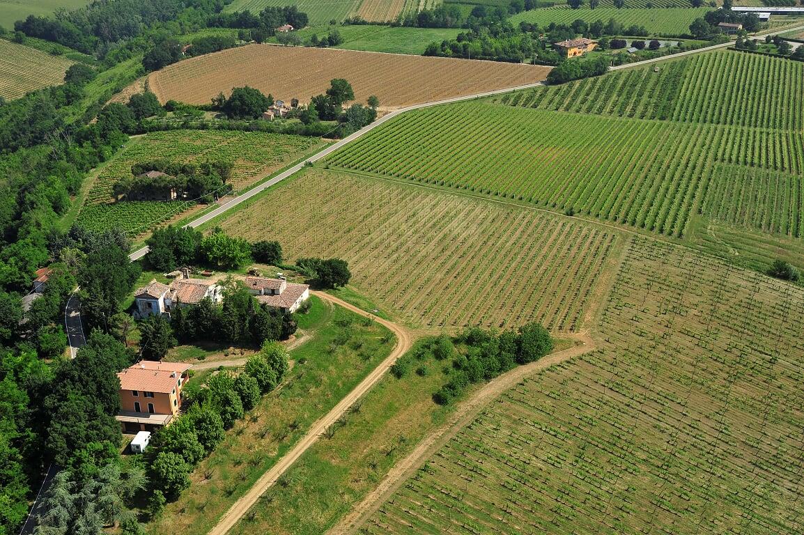 Tre Monti Azienda Agricola S.r.l.