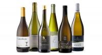 Selection Weißburgunder - 6 Flaschen des perfekten Weins für den Aperitif