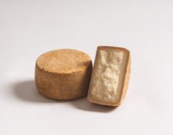 La Pecorina, Schnittkäse aus Schafmilch - Degust