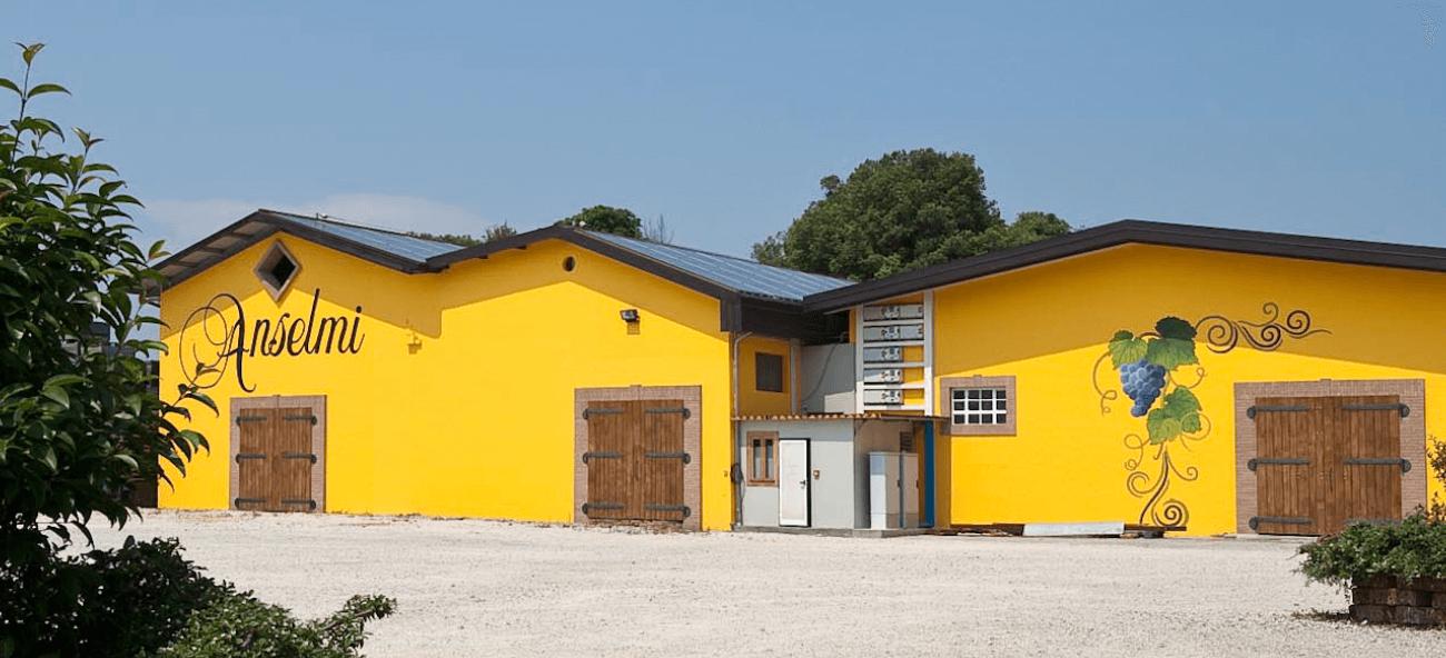 Weingut Azienda Agricola Anselmi