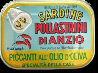 Sardine piccanti sott'olio, lattina, 100 g - Pollastrini