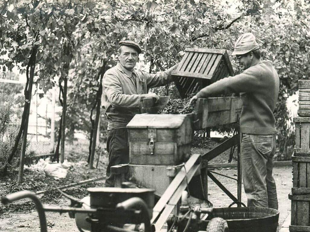 dal-1910-Acetaia-Marchi