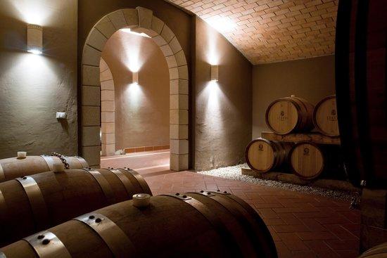 Azienda-Agricola-Statti-Wein