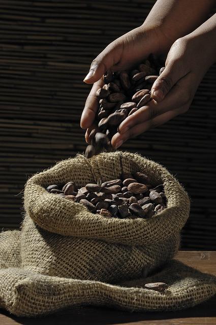 cocoa-beans-499970_64059ca5eb99aedc